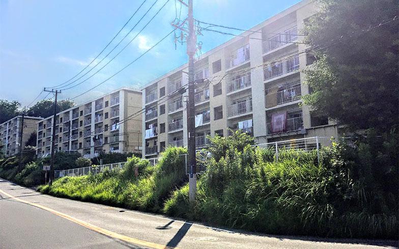 画像提供/神奈川県住宅供給公社