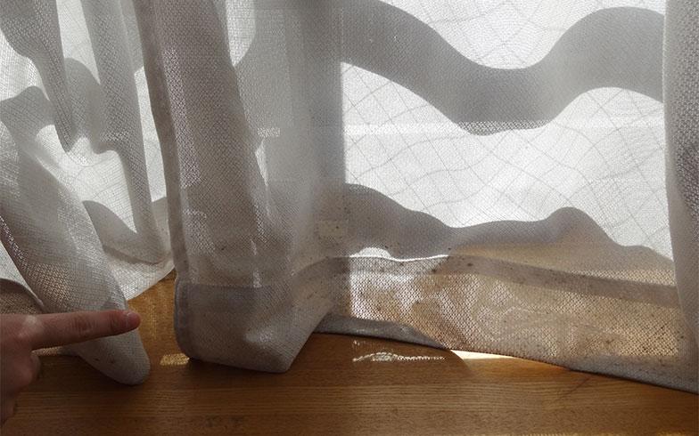 【画像2】課長宅の窓にかかっているレースカーテン。結露のせいか裾の部分がカビで汚れている(写真撮影/SUUMOジャーナル編集部)
