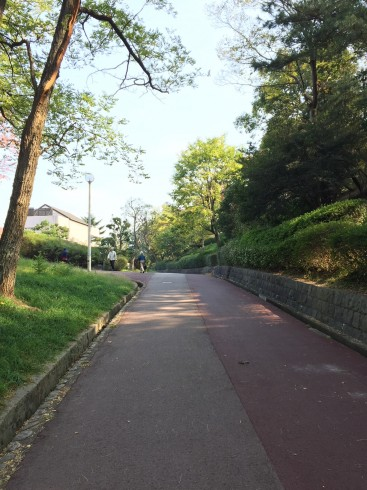 【画像1】泉北ニュータウンは自然あふれる立地だが坂が多く、高齢者が出歩くのを控える傾向にあった(画像提供/ヴァイタル・インフォメーション社)