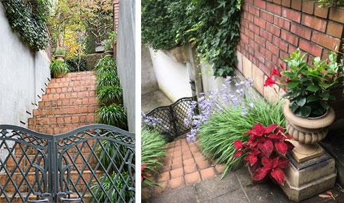 【画像1】取材当日は秋景色。花が終わっていたので、後日送っていただいた夏の写真が右。アガパンサスの⻘い花が両脇に(写真撮影/(左)片山貴博・(右)横山さん)