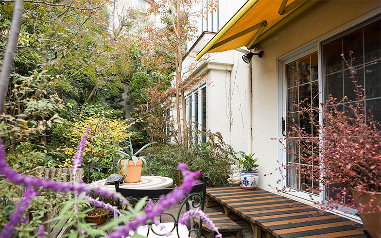 【画像8】花は少ないなか、紅葉が進み始めたお庭。⻩色のオーニング(可動式の日よけ)はオランダ製、夏にはテラス全体を日陰にすることもできる(写真撮影/片山貴博)