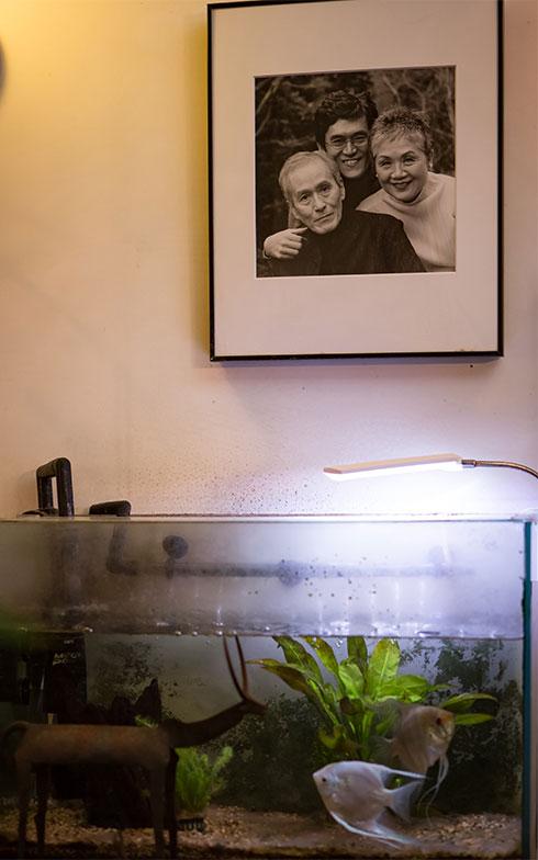 【画像21】ご家族写真の下にある水槽。「夫が家での時間が⻑いから、何か生き物が居ると良いと思って飼った熱帯魚なの」(写真撮影/片山貴博)