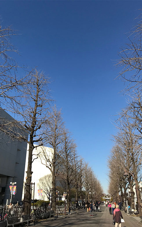 【画像5】会場となった光が丘IMA周辺。この青空の下で安心して暮らしたい。そう思えるほど澄み切った青空だった(写真撮影/山口俊介(BREEZE))