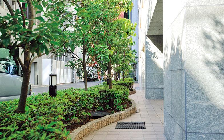 【画像2】マンション外周に配置された植栽。毎年、6月と10月に造園会社が入って手入れしている(写真撮影/柴田ひろあき)