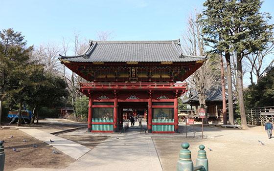 こちらはつつじの名所として知られる根津神社(写真撮影/SUUMOジャーナル編集部)