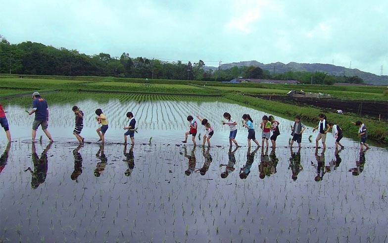 「田植え」イベントの様子(画像提供/キッズベースキャンプ)