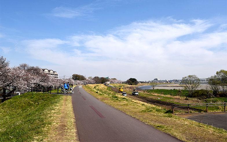 山梨・東京・神奈川を流れる多摩川(写真撮影/小野洋平)