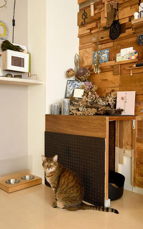 田中さんは愛猫2匹と暮らしています。パッチワークウォールの一角には、猫のトイレブースも設置しました(写真撮影/山出高士)