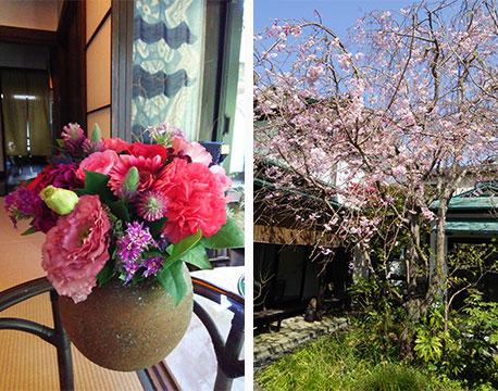お庭の花を花器に飾って、二度楽しむ。枝垂れ桜が和の住まいと調和する(写真撮影/Sさん)