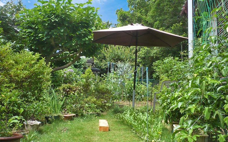 庭仕事も楽しみな広い庭。現在はウッドデッキを作成中(写真提供/中原氏)