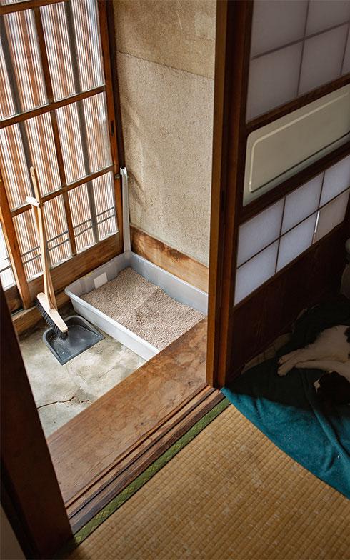 ベッド下収納のプラケースを転用した大きなトイレが置かれた玄関(写真撮影/片山貴博)