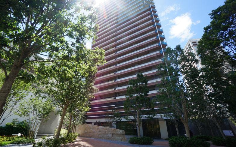 柏の葉キャンパス駅から徒歩3分の491戸の大型マンションだ(写真撮影/蜂谷智子)