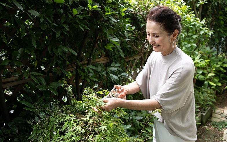 マンション1階でお庭が広く、草木の手入れも日課。「ハーブやもみじは、良くお料理にも使います」(写真撮影/片山貴博)