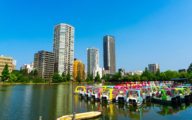 上野公園(写真/PIXTA)