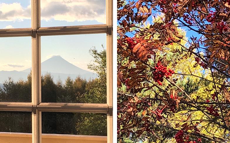 和さんが撮った、窓からの富士山や紅葉。一時として同じ景色は無い、自然の醍醐味(だいごみ)(写真撮影/古川和さん)