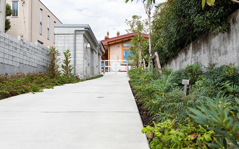 保育園の裏手にある搬入・搬出用の通路とコンクリートブロック造のゴミ置き場(通路左)(写真撮影/片山貴博)