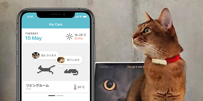 岸田さんもクラウドファンディングで支援したという猫用ウェアラブルデバイス「Catlog(キャトログ)」。これから楽しみな新サービスのひとつ(写真提供/RABO)