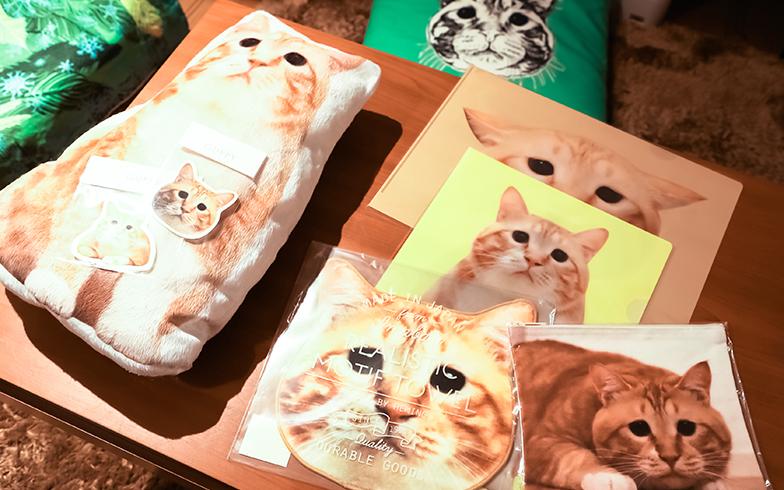 クッション、シール、ポストカード、タオルなどのぐっぴーグッズは、さきともさんたちがデザイン。イベントなどで販売しているそう(写真撮影/片山貴博)