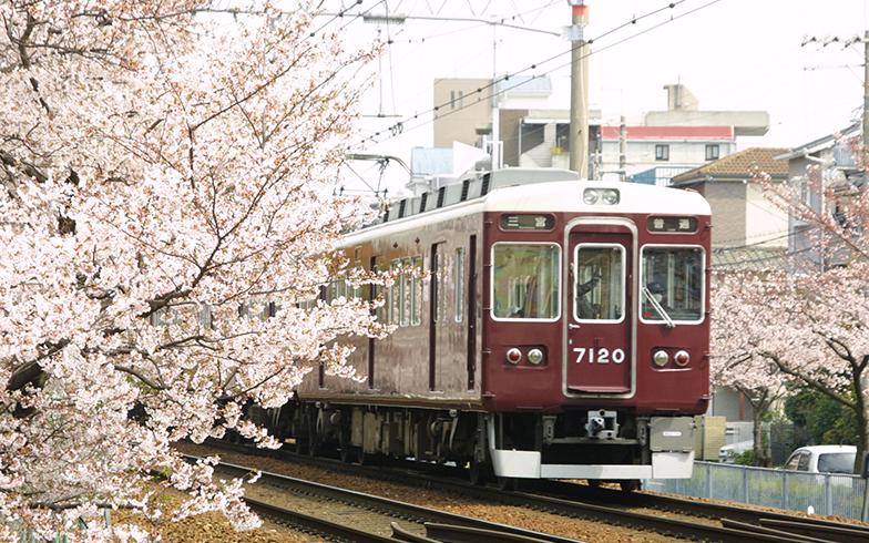 神戸線と桜(写真提供/PIXTA)