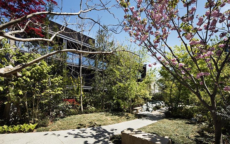 安心して散策できる敷地内のプライベートガーデン「彩の庭」。四季折々の表情を楽しめる緑豊かな中庭だ(画像提供/三井不動産レジデンシャル株式会社)