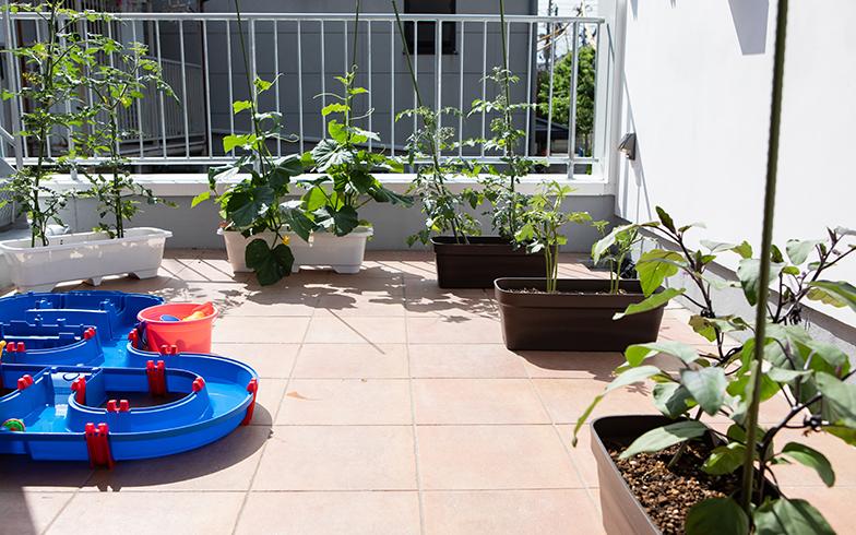 シェアハウス入口前のテラスには、保育園の園芸部の鉢植えが。「私と2歳の子のふたりの園芸部です(笑)。シェアハウス入口のテラスでトマトやきゅうりを育てています。毎日時間になると、『先生、園芸部の活動の時間だよ』と声をかけてくれて、毎日一緒にお水をあげています」(施設長・佐藤さん)(写真撮影/片山貴博)