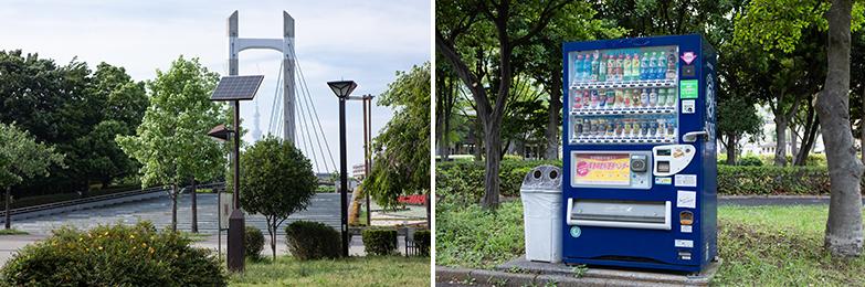 ソーラー照明灯(左)、自動販売機(右)も、どこにでもありそうな公園の風景ですが、防災機能も併せ持っています(写真撮影/片山貴博)
