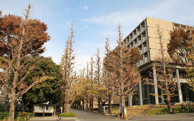 慶應大学 日吉キャンパス(写真/PIXTA)