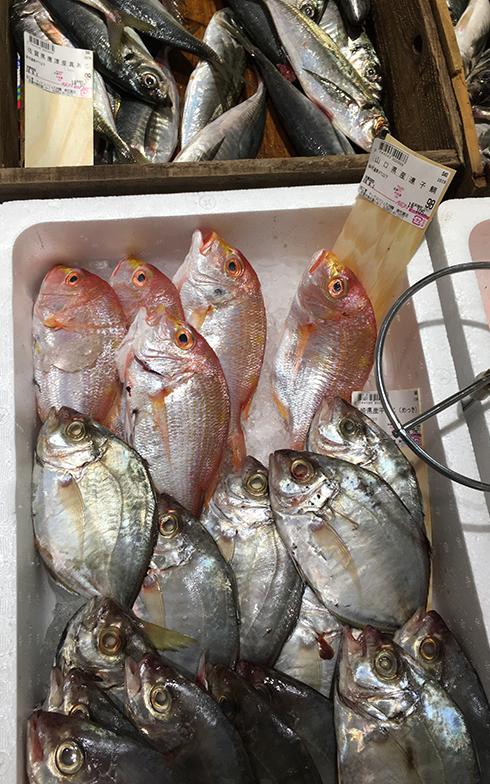 わが家から車で数分のところにあるスーパーの魚売り場。連子鯛1尾98円(税別)。佐賀県は鯛の消費量が全国一、日本全体の平均の3倍以上らしい(写真撮影/唐松奈津子)