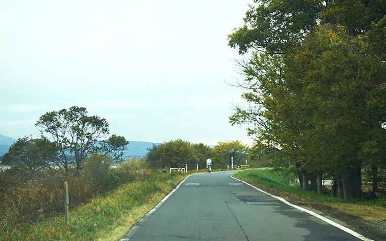 霞ヶ浦周辺をぐるりと楽しめるサイクリングロード。車の往来はそれほどないので、安心して自転車も走行できる(写真撮影/相馬ミナ)