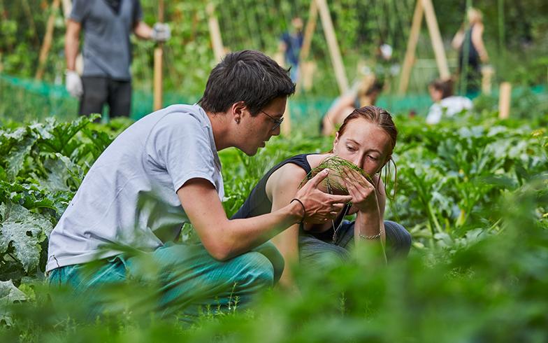 撮影当日は、フランスからのインターン生も農作業に参加していた。一般の参加者とも談笑しながら作業を楽しんでいる(撮影/Shinji Minegishi)
