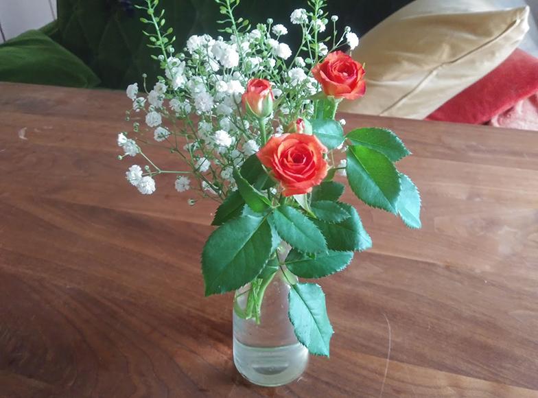 筆者が契約している花の定期便で届いた花の一例。1回500円(送料別途)のリーズナブルなコースでも、暮らしと気持ちに与える影響は大きい(撮影/佐藤由紀子)