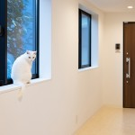 保護猫と暮らす三軒茶屋の「サンチャコ」。地域と人とを結ぶ新しい暮らし方