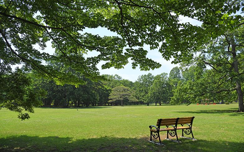 野川公園(写真/PIXTA)