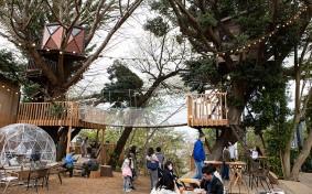 ツリーハウスのある空間「椿森コムナ」が素敵!不動産会社が宅地計画を中止した理由