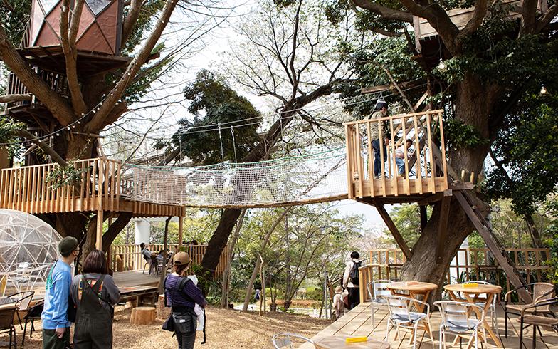 ツリーハウスとそれをむすぶ吊橋。子どもはもちろん、大人もはしゃいでしまう(写真撮影/片山貴博)