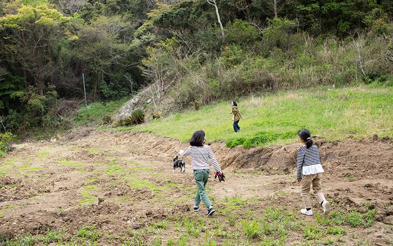 キャンプ場をつくろうとパワーショベルで傾斜をならし平地に(写真撮影/片山貴博)