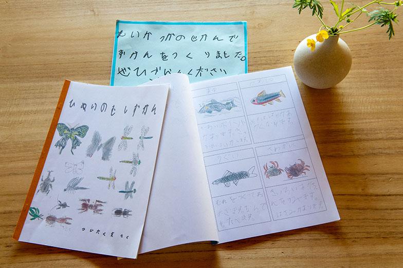 地元の小学生が手描きでつくった日貫の生き物図鑑(写真撮影/福角智江)