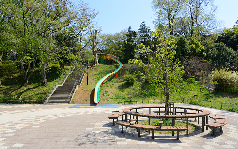 保土ヶ谷公園(写真/PIXTA)