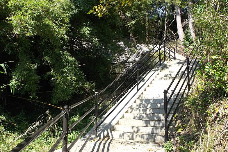 新たに整備された避難道は213路線にも及ぶ(写真提供/黒潮町)