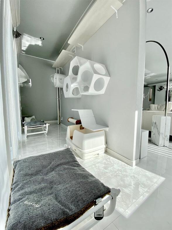 テレビを掛けた造作壁の後ろの猫スペース。トイレ、遊び場、寝床を設置している(画像提供/響介さん)