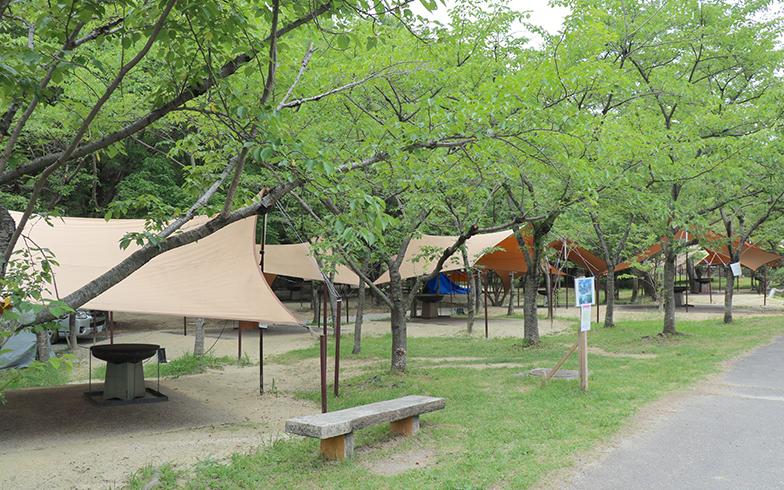 愛知県営小幡緑地のアウトドア施設「オバッタベッタ」(写真/PIXTA)
