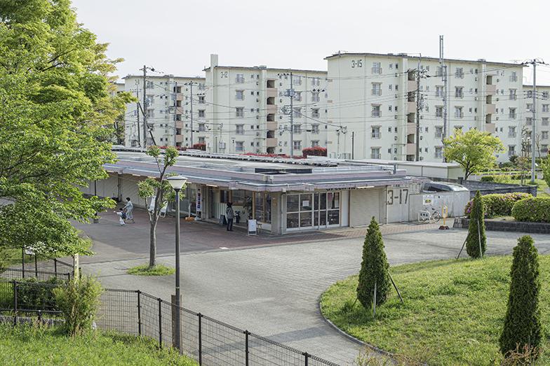 東京都町田市を代表する住宅団地「町田山崎団地」。丘陵地に116棟が建ち並びます(写真撮影/中村晃)