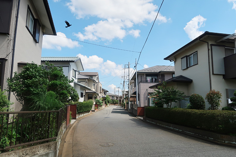 東千葉地区の住宅街。区画も広く、成熟した住宅地の印象(写真撮影/嘉屋恭子)