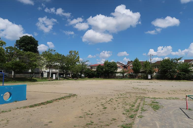 防災訓練が行われる公園。500人が集まる大規模な訓練が行われるのは驚き(写真撮影/嘉屋恭子)