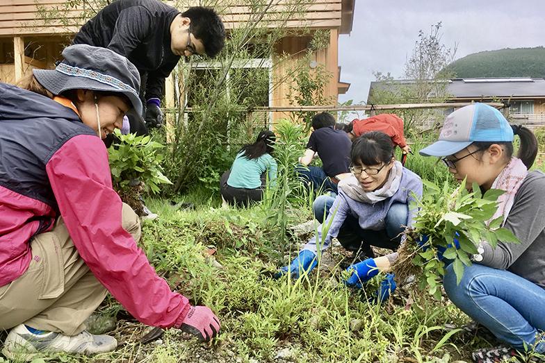 「地域の植生を活かしながら、楽しい原っぱを育ててゆくこと」を目標に、入居者や鮎喰川コモンの利用者である町内外の人たちと行う除草作業も大切な交流のひとつ(写真提供/神山町)